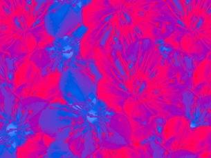 花の写真素材 [FYI01251498]