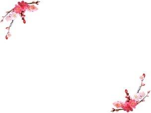 花の写真素材 [FYI01251500]