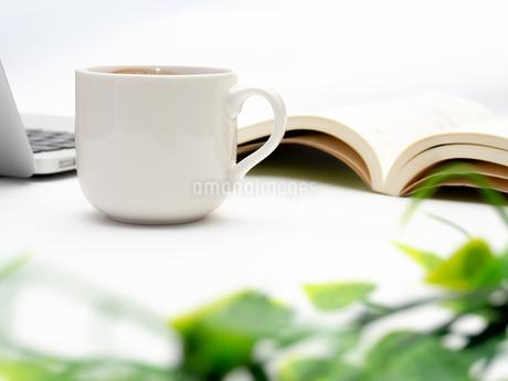 ノートパソコン ビジネスイメージの写真素材 [FYI01251635]