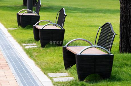 静かな公園のベンチの写真素材 [FYI01251668]