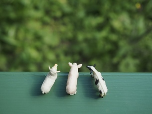 ミニチュアの家畜たち6の写真素材 [FYI01251672]