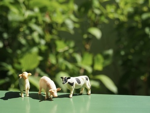 ミニチュアの家畜たち9の写真素材 [FYI01251676]