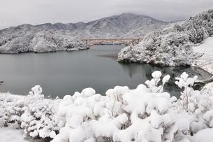 雪の宮ヶ瀬湖の写真素材 [FYI01251918]