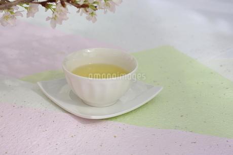 さくらと煎茶の写真素材 [FYI01252083]