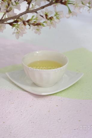 さくらと煎茶の写真素材 [FYI01252084]