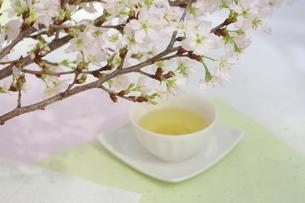 さくらと煎茶の写真素材 [FYI01252086]