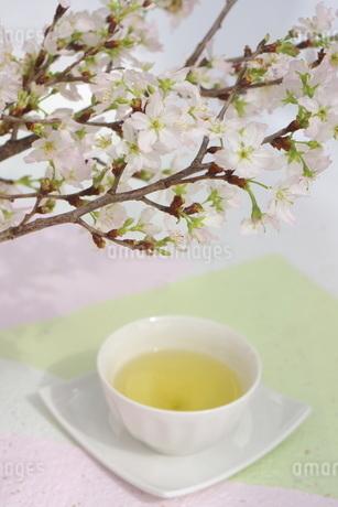 さくらと煎茶の写真素材 [FYI01252087]