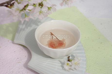 さくら湯の写真素材 [FYI01252090]