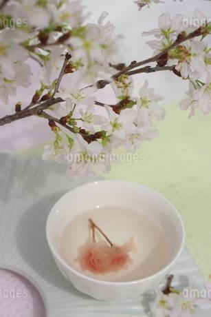 さくら湯の写真素材 [FYI01252095]