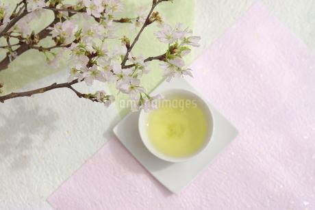 さくらと煎茶の写真素材 [FYI01252103]
