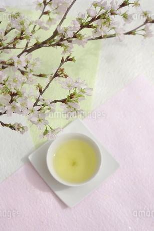 さくらと煎茶の写真素材 [FYI01252104]