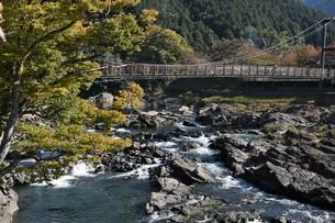 渓流の写真素材 [FYI01252423]
