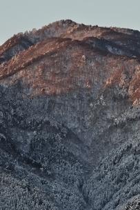 モルゲンロートの本間ノ頭の写真素材 [FYI01252499]