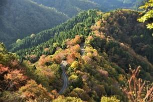 紅葉と山沿いの道の写真素材 [FYI01252544]