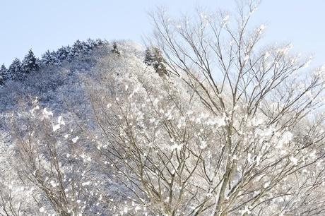 雪晴の朝の写真素材 [FYI01252578]