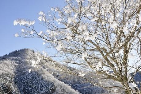 雪晴の朝の写真素材 [FYI01252581]