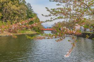 春の米沢城跡の菱門橋の風景の写真素材 [FYI01252763]