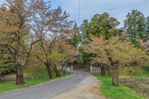 春の米沢城跡の風景の写真素材 [FYI01252765]