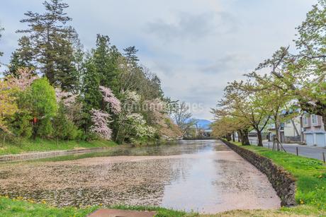 春の米沢城跡の風景の写真素材 [FYI01252766]