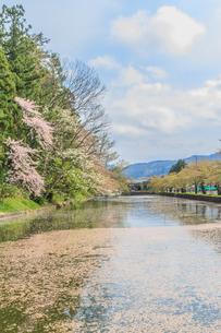 春の米沢城跡の風景の写真素材 [FYI01252770]