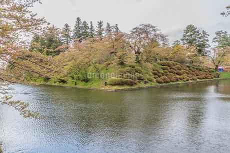春の米沢城跡の風景の写真素材 [FYI01252775]