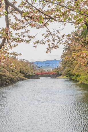 春の米沢城跡の菱門橋の風景の写真素材 [FYI01252777]