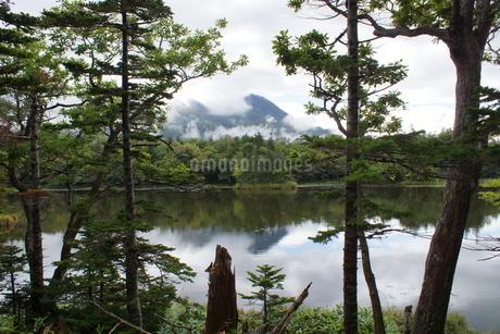 知床半島の風景 知床五胡の写真素材 [FYI01252832]