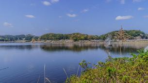 春の高滝湖の風景の写真素材 [FYI01253095]