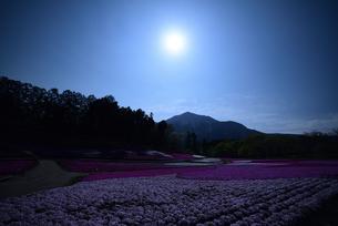 武甲山と羊山公園の芝桜の写真素材 [FYI01253147]