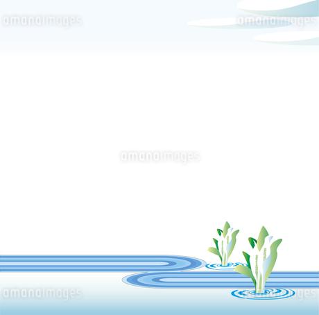 水芭蕉の花のイラスト素材 [FYI01253212]