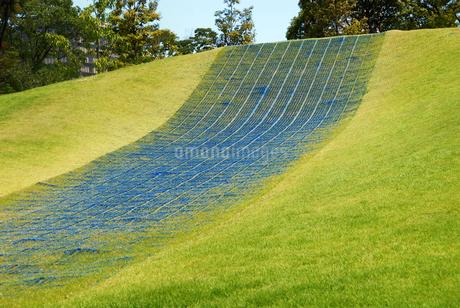 芝生の滑り台の写真素材 [FYI01253241]
