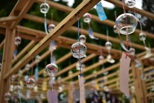 ガラスの風鈴の写真素材 [FYI01253286]