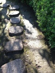 公園の飛び石2の写真素材 [FYI01253326]