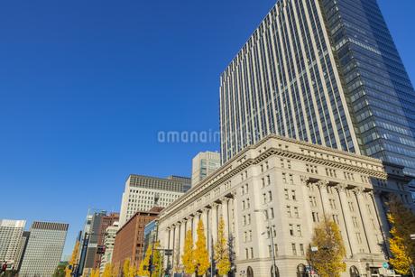紅葉の木立と丸の内ビル群の写真素材 [FYI01253375]
