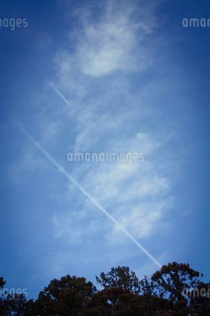 2本の飛行機雲の写真素材 [FYI01253429]
