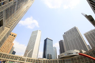 新宿高層ビル群と青空の写真素材 [FYI01253470]