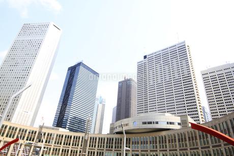 新宿高層ビル群と青空の写真素材 [FYI01253471]
