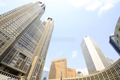 都庁と青空の写真素材 [FYI01253517]