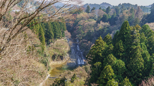 春の粟又の滝の風景の写真素材 [FYI01253565]