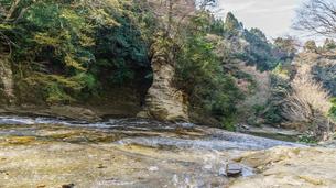 春の粟又の滝の風景の写真素材 [FYI01253570]