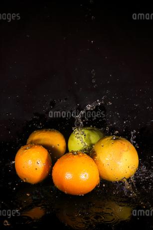 オレンジとグレープフルーツと水飛沫の写真素材 [FYI01253578]