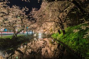 春のライトアップされた弘前城跡の風景の写真素材 [FYI01253662]