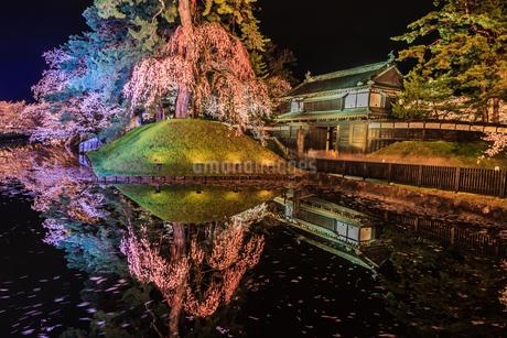 春のライトアップされた弘前城跡の風景の写真素材 [FYI01253683]