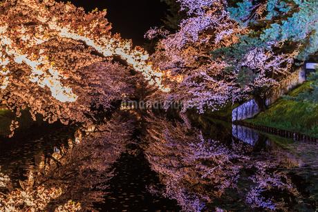 春のライトアップされた弘前城跡の風景の写真素材 [FYI01253689]