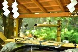 清めの水の写真素材 [FYI01253693]