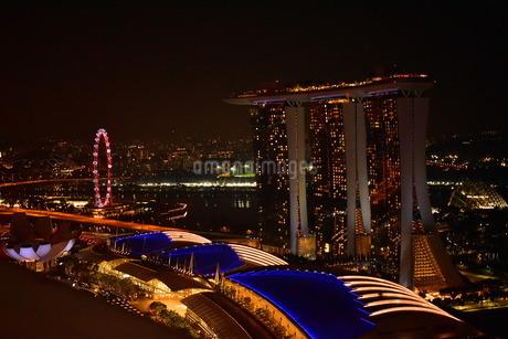 シンガポールの夜の写真素材 [FYI01253698]
