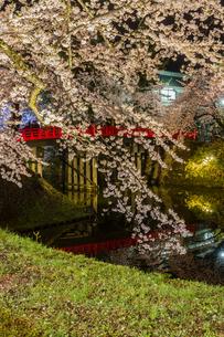 春のライトアップされた弘前城跡の風景の写真素材 [FYI01253718]