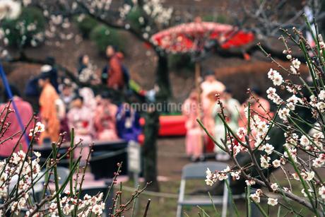 着物・和装の女性と茶屋の写真素材 [FYI01253736]