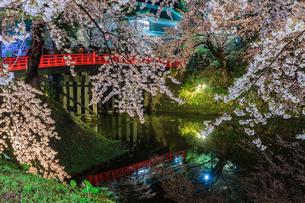 春のライトアップされた弘前城跡の風景の写真素材 [FYI01253741]