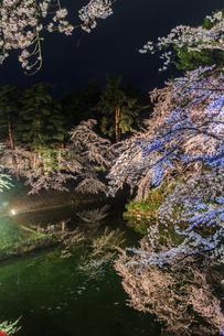 春のライトアップされた弘前城跡の風景の写真素材 [FYI01253792]